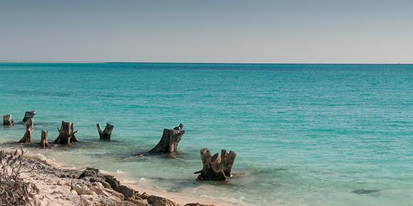 Cayo Largo del Sur. (Alessandro Caproni / Flickr)