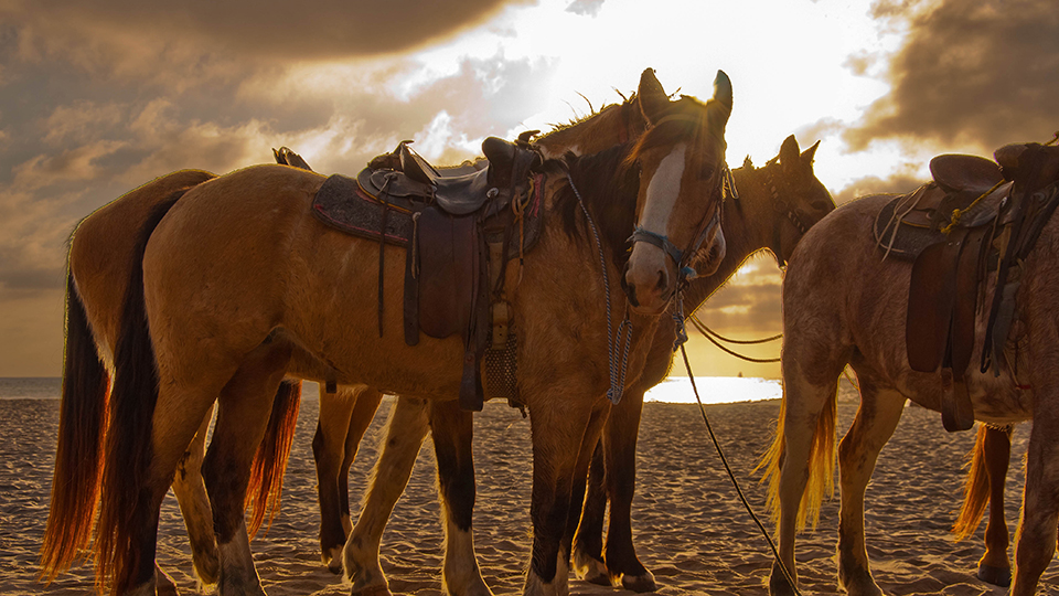 Rosarito Beach in Baja California. (John Liu / Flickr)